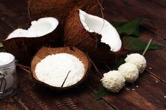 Kokosnöt med sidor och kokosnötolja i krus Royaltyfria Bilder