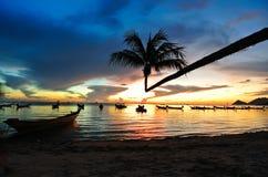 Kokosnöt med solnedgång på stranden Royaltyfri Foto