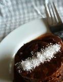 Kokosnöt- och chokladkaka med chokladsås Royaltyfri Foto