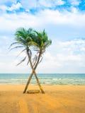 Kokosnöt och strand Royaltyfria Foton