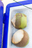 Kokosnöt på is i marknaden, Thailand Royaltyfri Bild