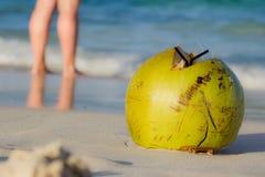 Kokosnöt på stranden Arkivbild