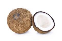 Kokosnöt på vitbakgrund Arkivfoton