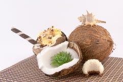 Kokosnöt, skal och kokosnötsötsaker Arkivbild