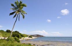 Kokosnötbro Arkivbild