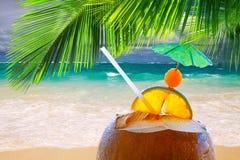Kokosnötcoctail på den karibiska stranden. Fotografering för Bildbyråer
