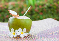 Kokosnötdrink Fotografering för Bildbyråer