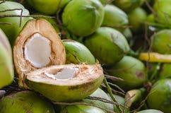 Kokosnöten delade i halva på en hög av kokosnötter Selektivt fokusera Arkivfoton