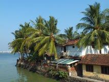 Kokosnöten gömma i handflatan i Kochi Royaltyfria Foton