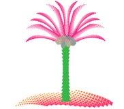 Kokosnöten gömma i handflatan på ön Royaltyfri Foto