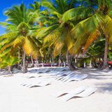 Kokosnöten gömma i handflatan, tomma dagdrivare, strand Royaltyfria Bilder