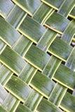 Kokosnöten lämnar vävd bakgrund Royaltyfri Bild