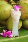 Kokosnöten med kokosnöten bevattnar Royaltyfri Bild