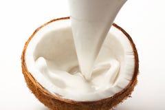 Kokosnöten med kokosnöten mjölkar royaltyfria bilder