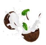 Kokosnöten med mjölkar färgstänk Arkivfoton