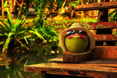 Kokosnöten med sugrörhatten och den ljusa solglasögon står på bänken i varm signal Royaltyfria Foton