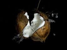 kokosnöten mjölkar färgstänk royaltyfri bild