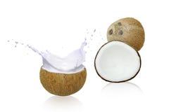 Kokosnöten mjölkar in vitkrämfärgstänk, Arkivbild