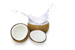Kokosnöten mjölkar in vitkrämfärgstänk, Arkivfoto