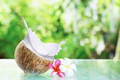 Kokosnöten mjölkar in vitkrämfärgstänk, Royaltyfri Fotografi