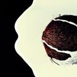 Kokosnöten på svart bakgrund med att flöda ner kokosnöten mjölkar Royaltyfri Fotografi