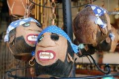 Kokosnöten piratkopierar huvud Arkivbilder