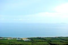 Kokosnötfält från kullen nära havet Arkivfoton