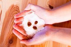 Kokosnötflingor Arkivfoto