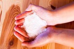 Kokosnötflingor Fotografering för Bildbyråer