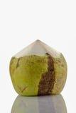 Kokosnötfrukt Arkivbild