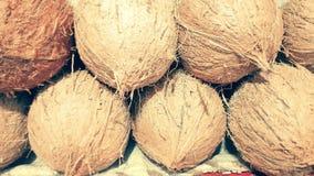 Kokosnötfrukt Arkivfoto