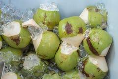 Kokosnötfruktsaft och nytt som coolt blöts i en ishink, det royaltyfri bild
