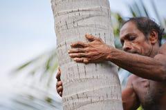 Kokosnötman Arkivfoto
