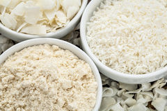 Kokosnötmjöl och flingor Arkivbild