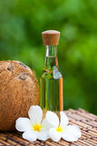 kokosnötolja Royaltyfri Fotografi
