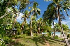 Kokosnötpalmträd över den tropiska vita sandstranden Arkivfoton