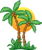 kokosnötsoluppgång Royaltyfria Foton