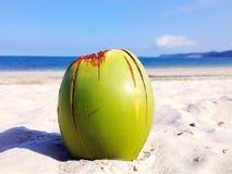 Kokosnötstrand Arkivfoton