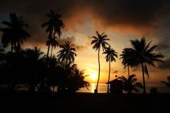 Kokosnötstrandsoluppgång Royaltyfri Fotografi