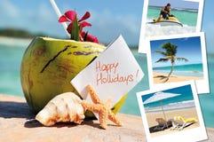 Kokosnötter coctail, sjöstjärna och pics Fotografering för Bildbyråer