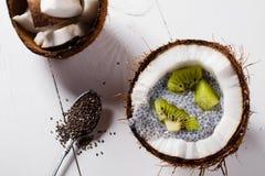 Kokosnötter med chiapudding Arkivfoto