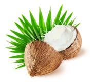 Kokosnötter med mjölkar färgstänk och bladet som isoleras på vit bakgrund Royaltyfri Bild