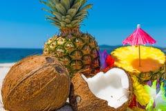 Kokosnötter och ananors på stranden Arkivbilder