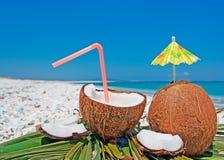 Kokosnötter och paraply Arkivbild