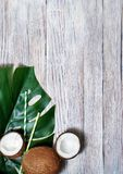 kokosn?tter och tropiskt blad av monsterav?xten med en pappers- sugr?rcoctail p? orange bakgrund Plant lager, b?sta sikt, kopieri royaltyfria foton
