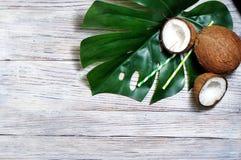 kokosn?tter och tropiskt blad av monsterav?xten med en pappers- sugr?rcoctail p? vit tr?bakgrund Plant lager, b?sta sikt, kopia royaltyfri foto