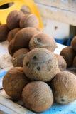 Kokosnötter på en fruktmarknad royaltyfri foto