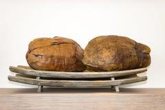 Kokosnötter på ett magasin på en hylla royaltyfri foto