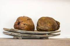 Kokosnötter på ett magasin på en hylla Arkivbilder