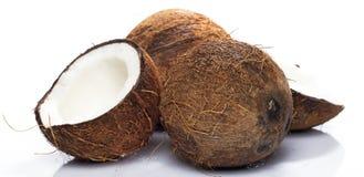 Kokosnötter på vitbakgrund Arkivbild
